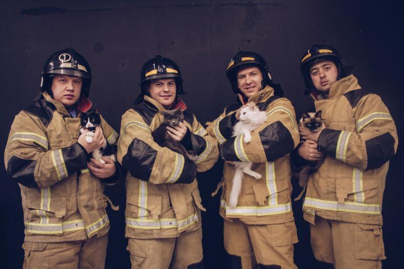 «Пожарные котики» от МЧС (фото)