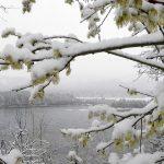 Погода в Ангарске 21 апреля: прогноз, приметы и видеообзор