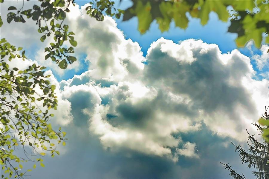 Погода в Ангарске 22 июня: прогноз, приметы и видеообзор