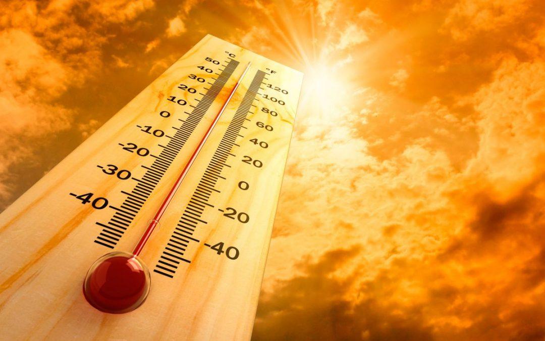 Погода в Ангарске 29 июня: прогноз, приметы и видеообзор