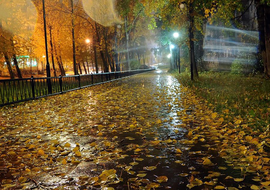 Погода в Ангарске 11 сентября: прогноз, приметы и видеообзор