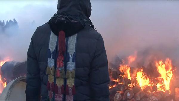 Ангарская полиция не нашла состава преступления в сожжении верблюдов