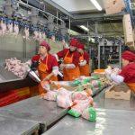 Приостановлена деятельность помещений по производству полуфабрикатов и готовой к употреблению продукции Ангарской птицефабрики