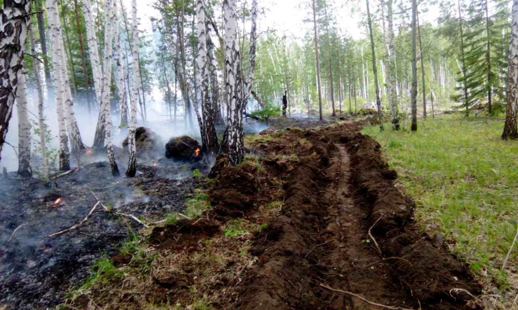За минувшие сутки в Иркутской области ликвидировано 24 лесных пожара