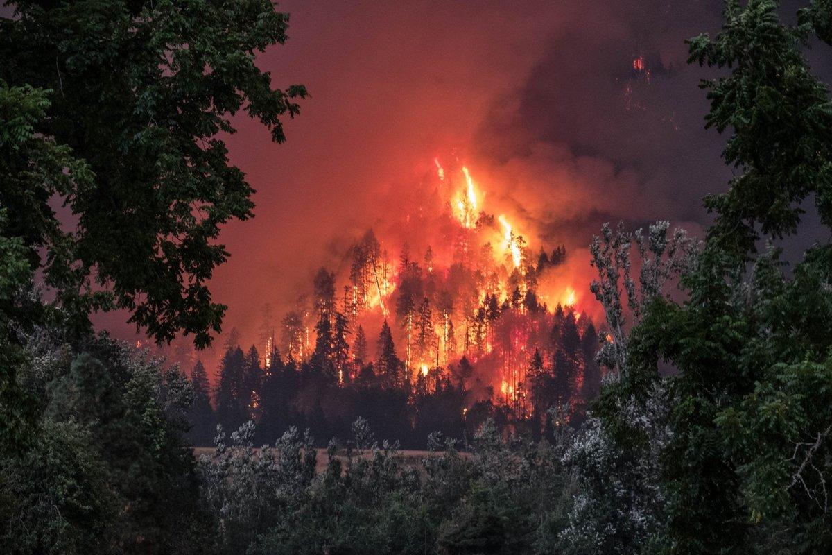 пластиковых картинки лесов в огне сегодняшний