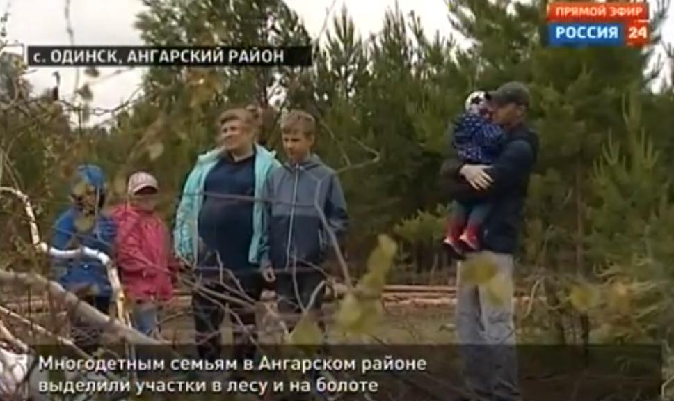 Многодетным семьям в Ангарском районе выделили участки в лесу и на болоте (видео)