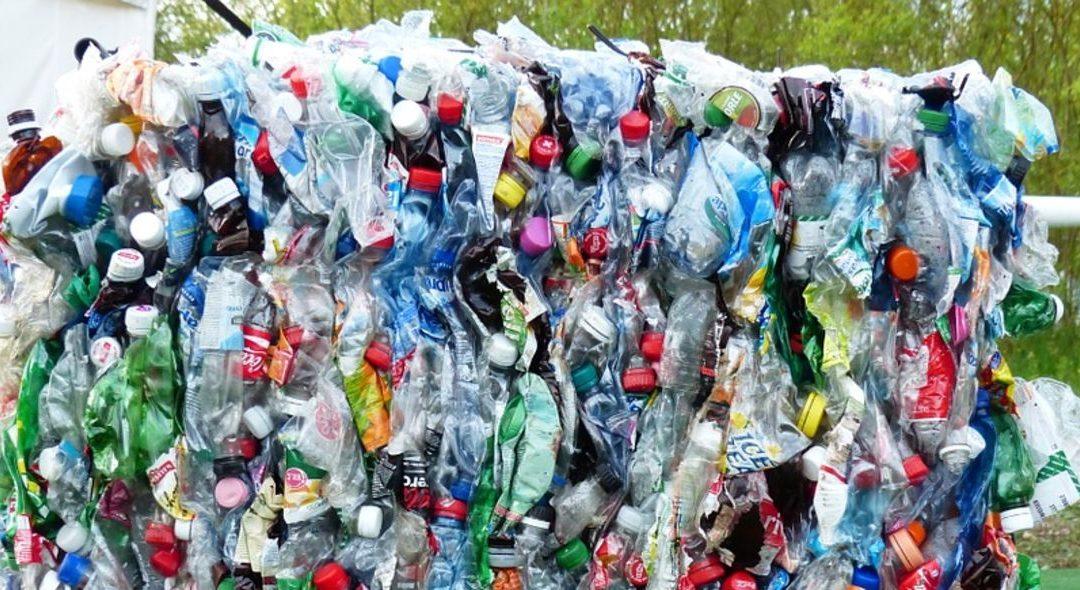 В Ангарске с 1 августа начнется раздельный сбор мусора