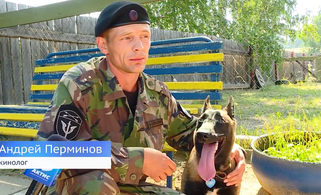 Ангарский кинолог стал лучшим в Сибирском федеральном округе (видео)