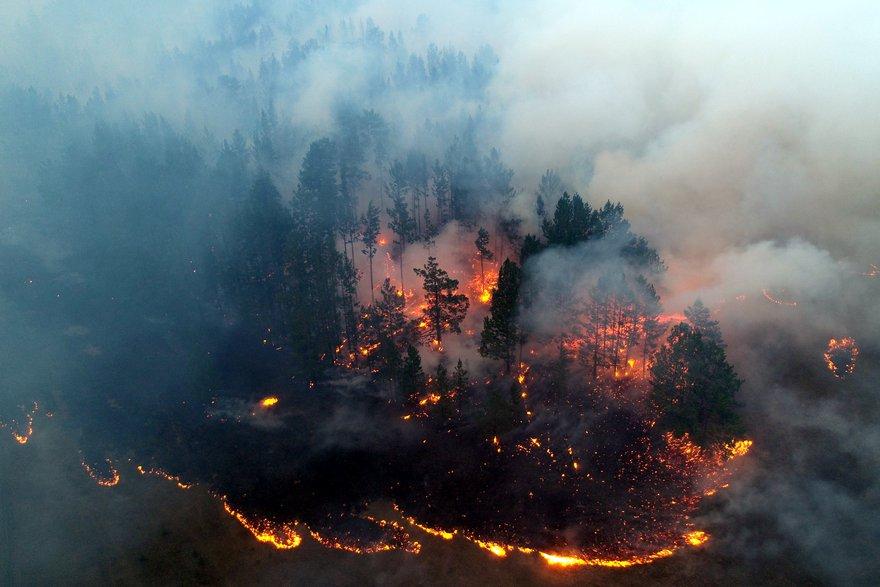 Более 110 тысяч гектаров леса горит в Иркутской области