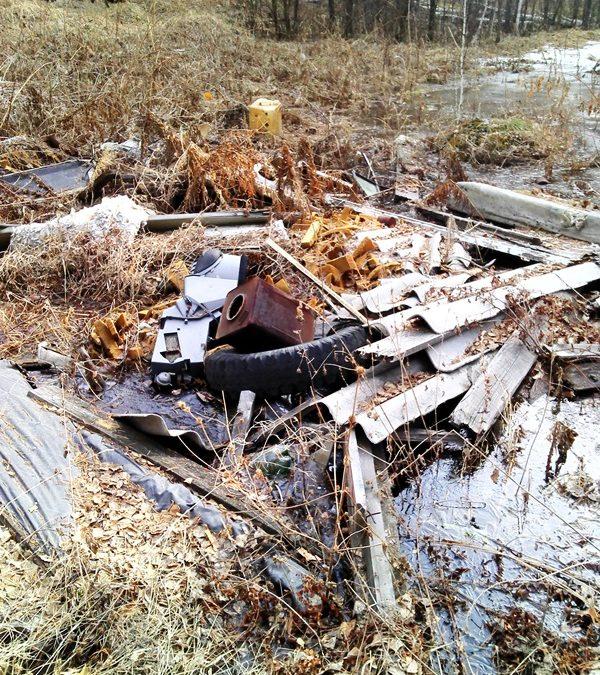 В Ангарске обнаружили свалку бытовых и древесных отходов на площади 1861 кв.м.