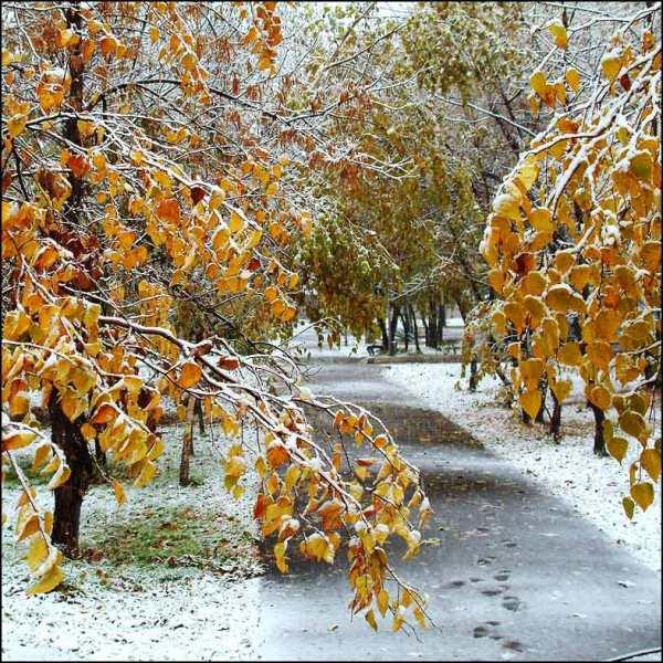 Прогноз погоды на 19 ноября в Ангарске. Народные приметы.