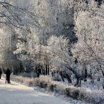 Прогноз погоды на 10 декабря в Ангарске. Народные приметы.