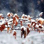 Прогноз погоды на выходные в Ангарске. Народные приметы.