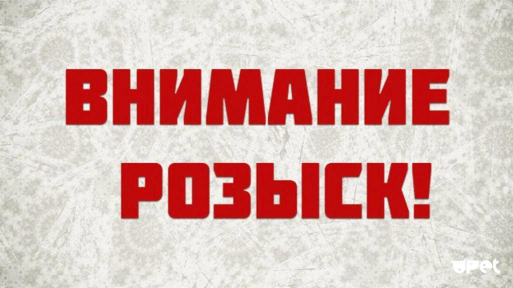 Розыск подозреваемых в краже из «Детского мира»в Ангарске.