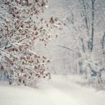 Прогноз погоды на 24 января в Ангарске. Народные приметы.