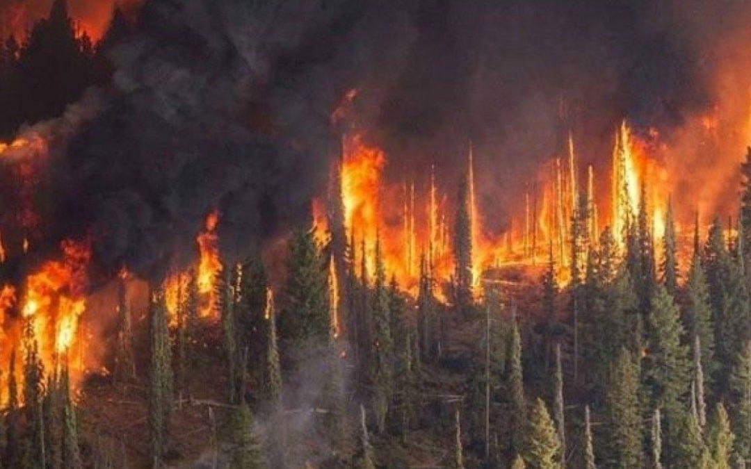 Иркутская область готовится к пожароопасному периоду.