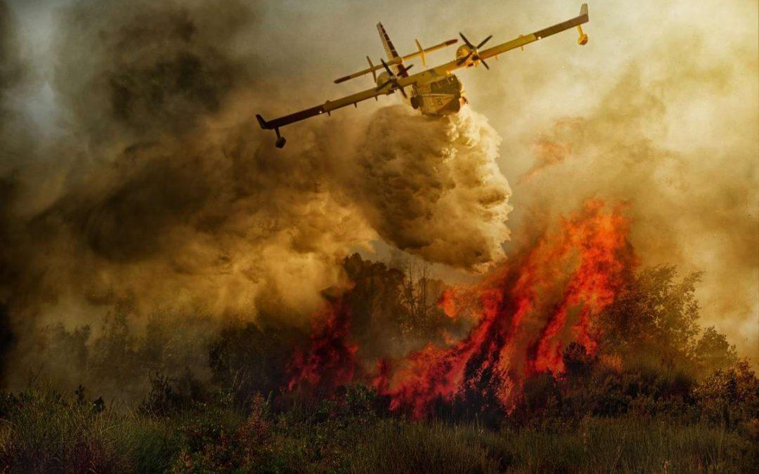 Из-за прогноза погоды особый пожарный режим продлили до 1 июля