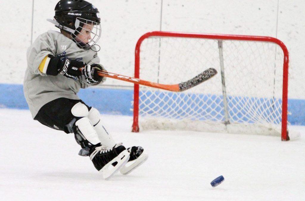 Область закупит оборудование для хоккея с шайбой на 16,2 млн руб.