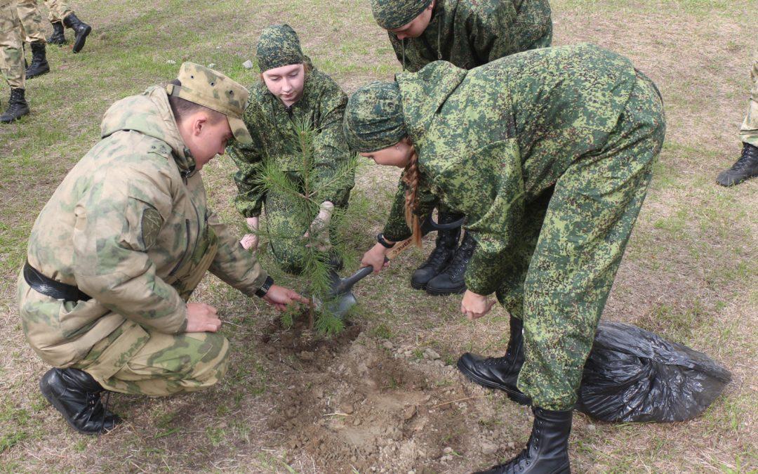 Воспитанники класса Росгвардии в Ангарске высадили «Сад Памяти»