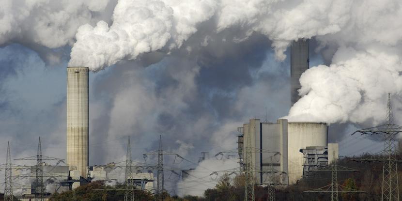 Государство несёт ответственность за экологический ущерб