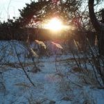 Погода в Ангарске 16 января