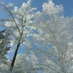 Погода в Ангарске 17 января