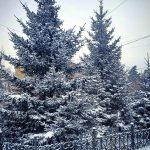 Погода в Ангарске 19 января