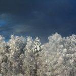 Погода в Ангарске 26 января