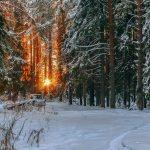 Погода в Ангарске 25 февраля