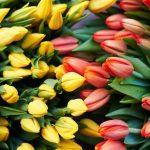 Самые желанные и бесполезные подарки на 8 марта