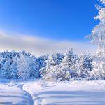 Погода в Ангарске 4 марта