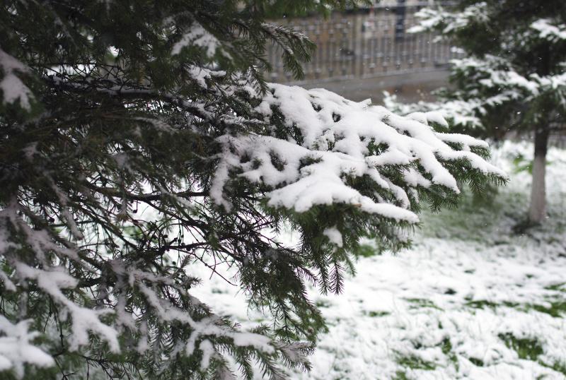 Ухудшение погоды ожидается в Иркутской области днем 13 апреля.