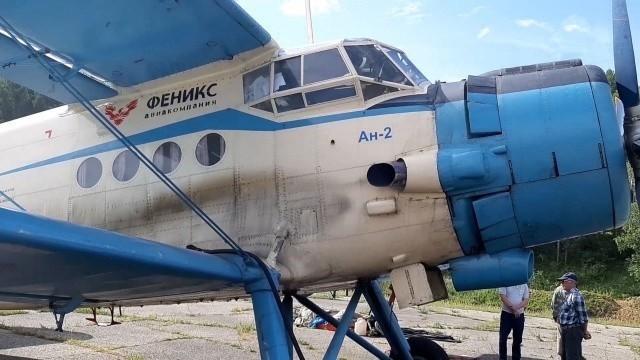 Иркутские следователи вылетели на место обнаружения обломков самолета Ан-2.