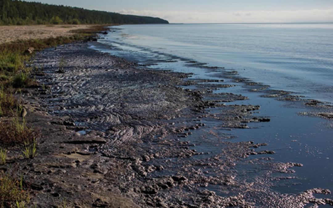 Минприроды РФ не подтвердило факт загрязнения Байкала, которое выявили учёные.