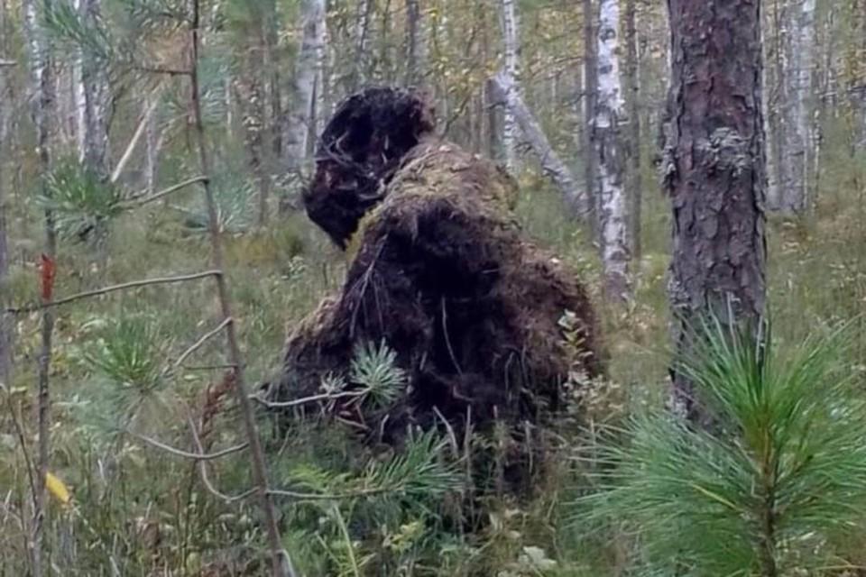 """На Байкале сфотографировали """"Снежного человека""""."""