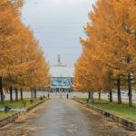 27 октября в Ангарске будет самым теплым днем за последние 60 лет!